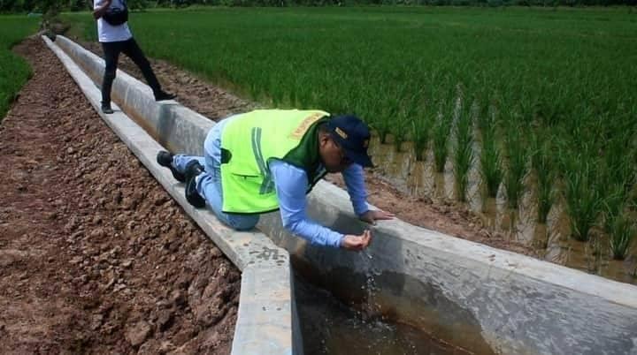 Irwan, 2.500 Hektar Sawah di Kecamatan Sangatta Selatan Berpotensi Jadi Lumbung Pangan Kaltim